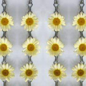 Daisies Chained by Helen Bradley